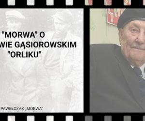 """""""Morwa"""" o Wacławie Gąsiorowskim """"Orliku"""""""
