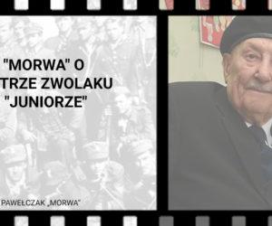 """""""Morwa"""" o Piotrze Zwolaku """"Juniorze"""""""